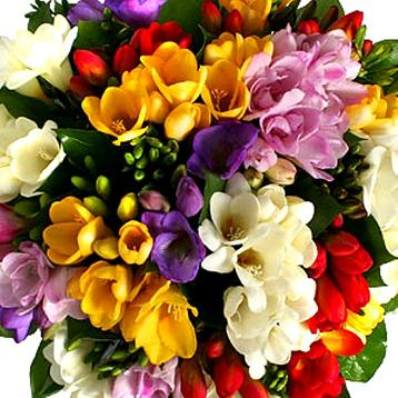 Картинки букет красивых цветов