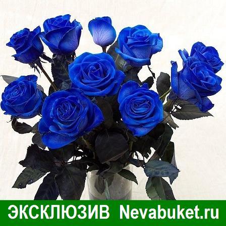 Где можно в с-пб купить голубые розы стабилизированные цветы купить в казани