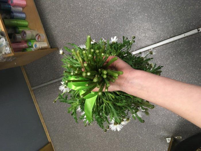 Круглосуточная доставка цветов ромашки спб — img 3