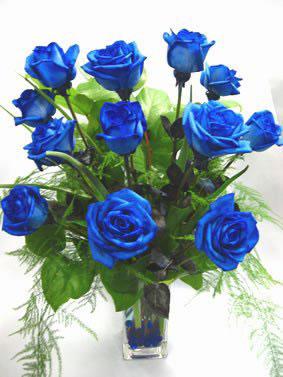 Доставка цветов синие розы спб рисовать цветы на 8 марта