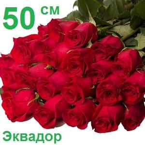 Опт цветы спб ленинский