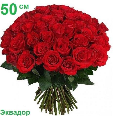 Розы степногорские костанай купить оптом доставка букетов цветов заказ цветочных композиций ljcnfdrf wdtnjd