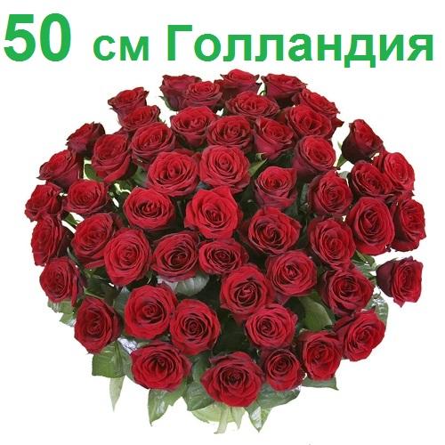 Розы в бобруйске оптом где купить подарок на свадьбу букет из конфет
