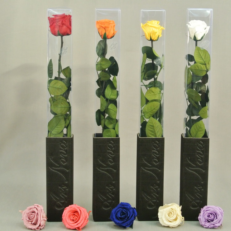 Как стабилизированные цветы своими руками