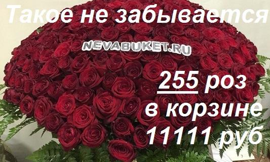 Доставка цветов спб красногвардейский район подарок на 8 марта из конфет своими руками
